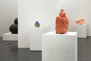 Installation view<BR>