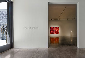 Installation photography, Group Show: Evolver