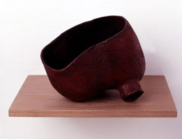 twofoottub, 1995 - 96<BR>