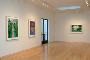 Installation photography, David Hockney, Drawing in a Printing Machine