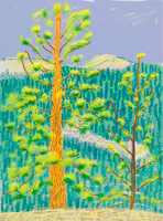 David Hockney / Untitled No. 8 from The Yosemite Suite, 2010 / iPad drawing printed on paper / 37 x 28 in. (94 x 71.1 cm) / Edition of 25