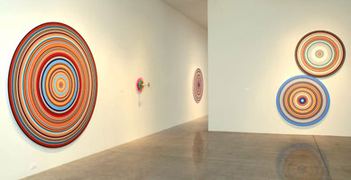Installation photography, Don Suggs: Concentric