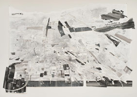 Fran Siegel<br>