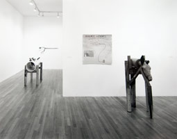 Jimmy Durham installation photography, 1993