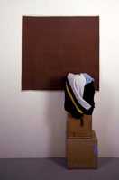 Steve DeGroodt<BR>