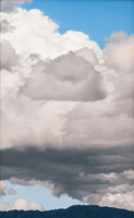Passing Storm, 2009<BR>