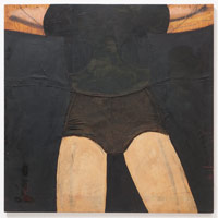 Tony Berlant<BR>Amazon, 1963<BR>cloth, polyester resin, oil and enamel on plywood<BR>48 x 48 in (121.9 x 121.9 cm)