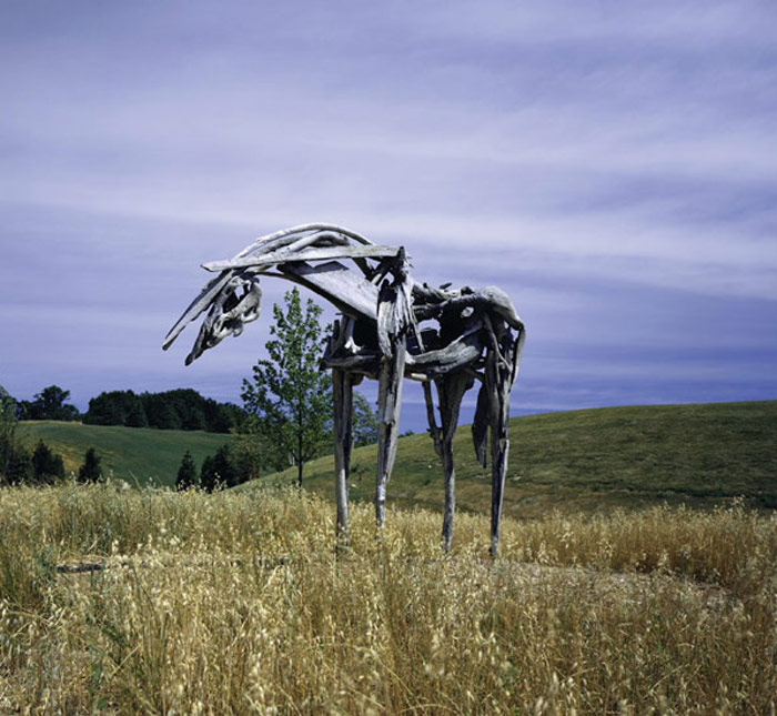 Essence: The Horses of Deborah Butterfield