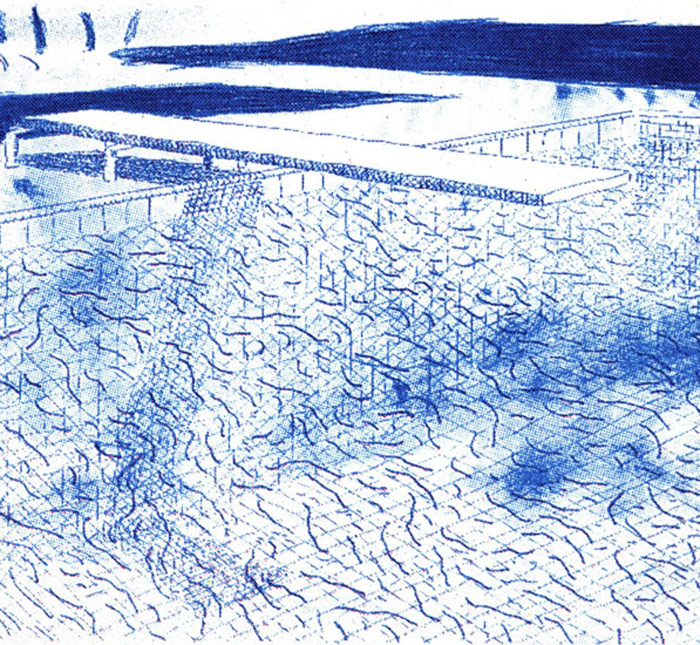 David Hockney, Twenty-Two Lithographs, Pools, Palm Trees, Portraits and Flowers 1978 - 1980